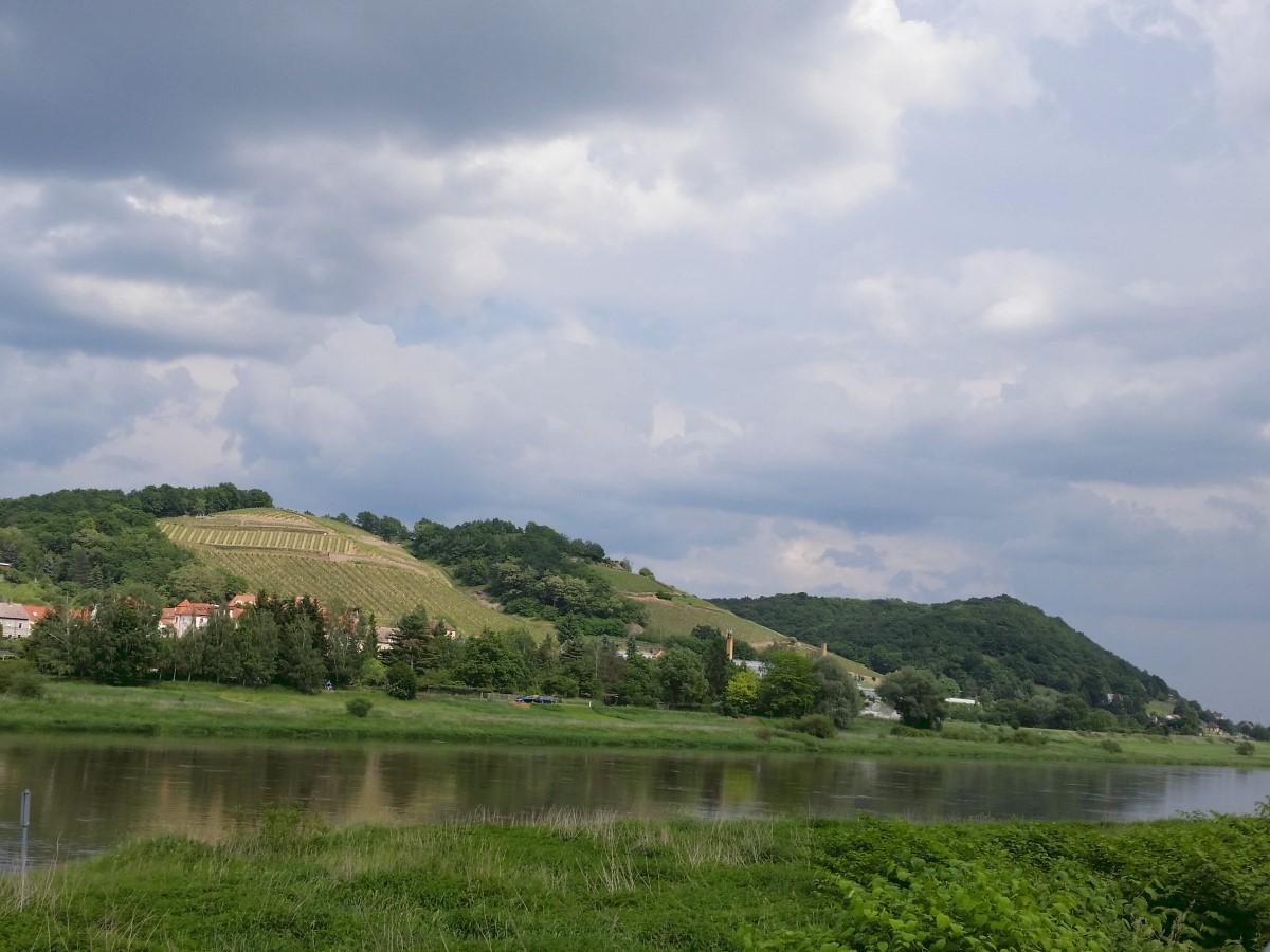Blick zum Spaargebirge vom Elberadweg