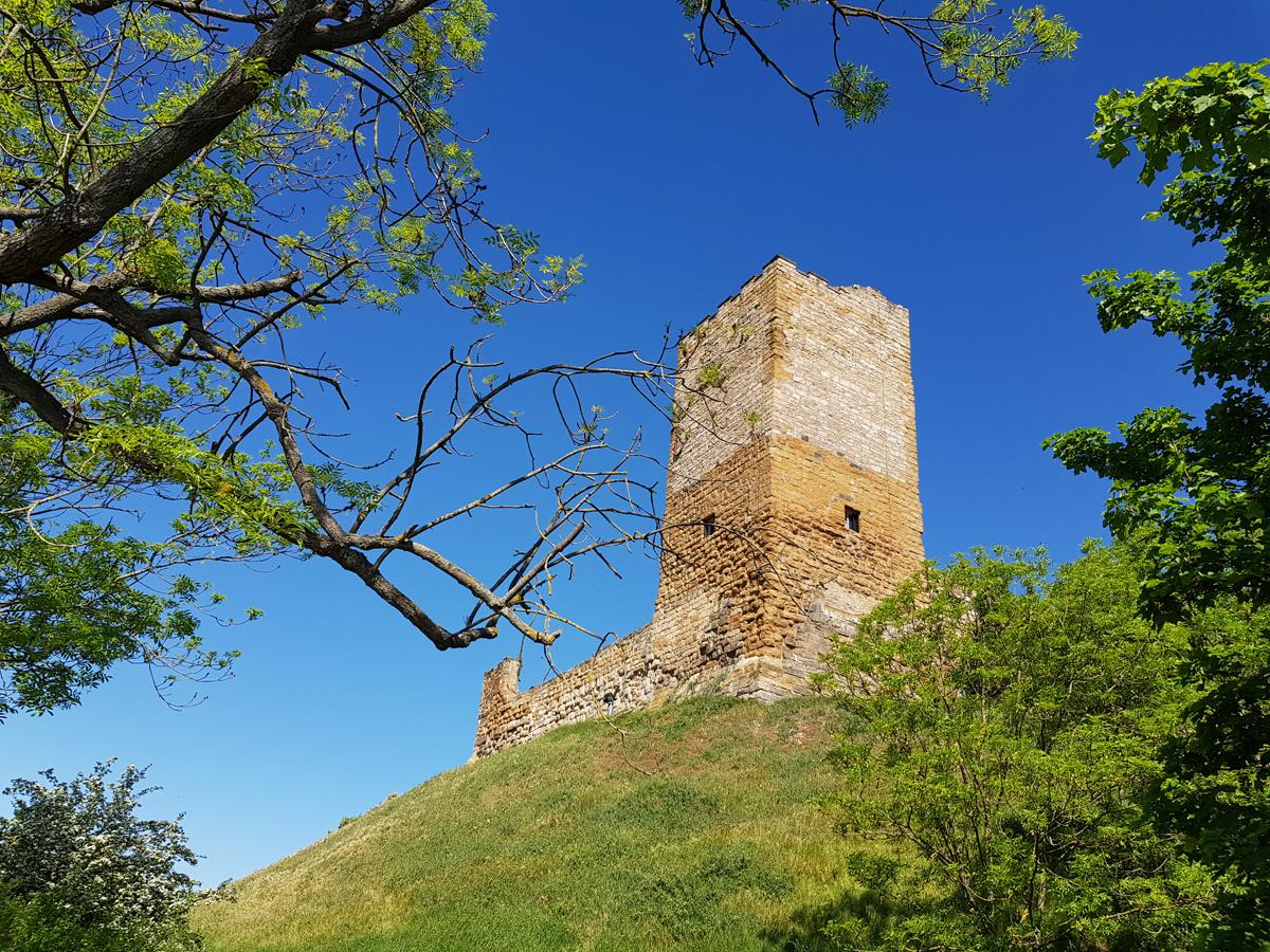 Blick zum Wehrturm der Burg Gleichen