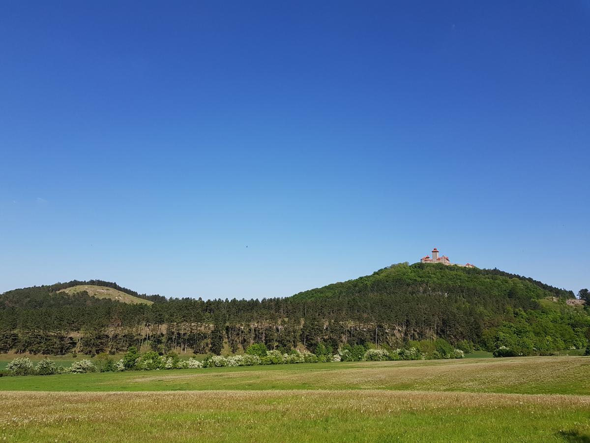 Blick zum Roten Berg und zur Wachsenburg