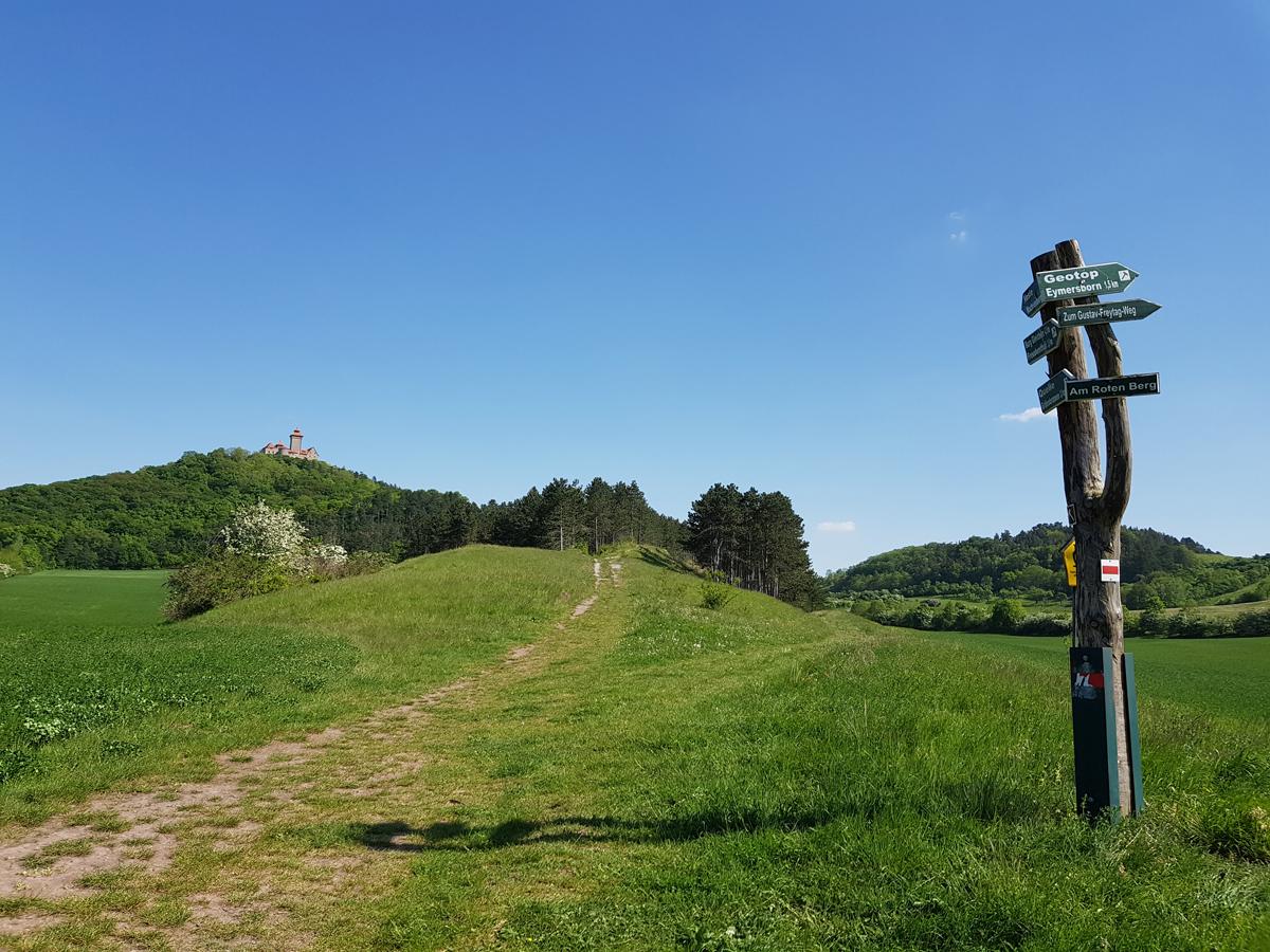 Wegkreuzung und Aussicht am Roten Berg