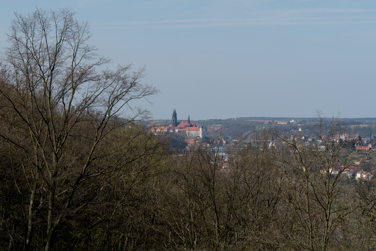 Blick zum Meißner Burgberg