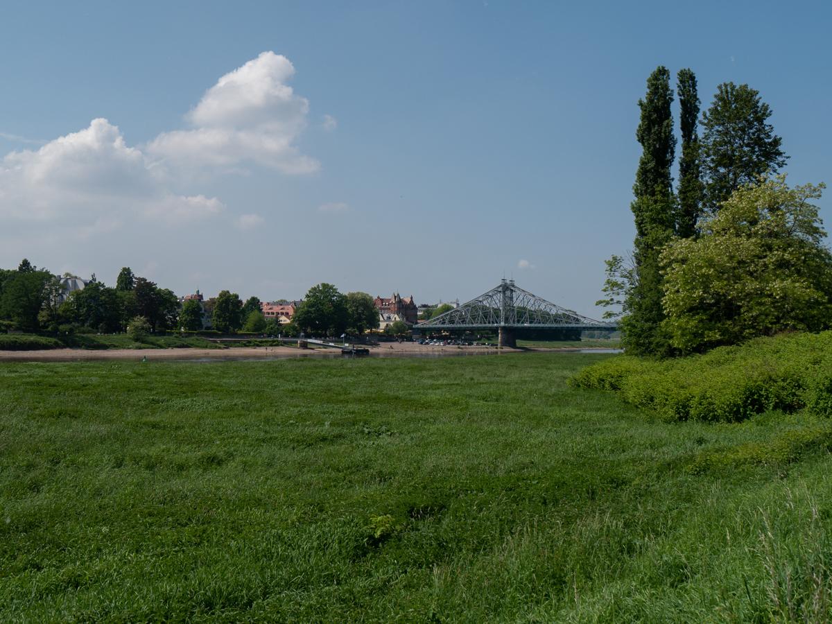Auf dem Rückweg an der Elbe
