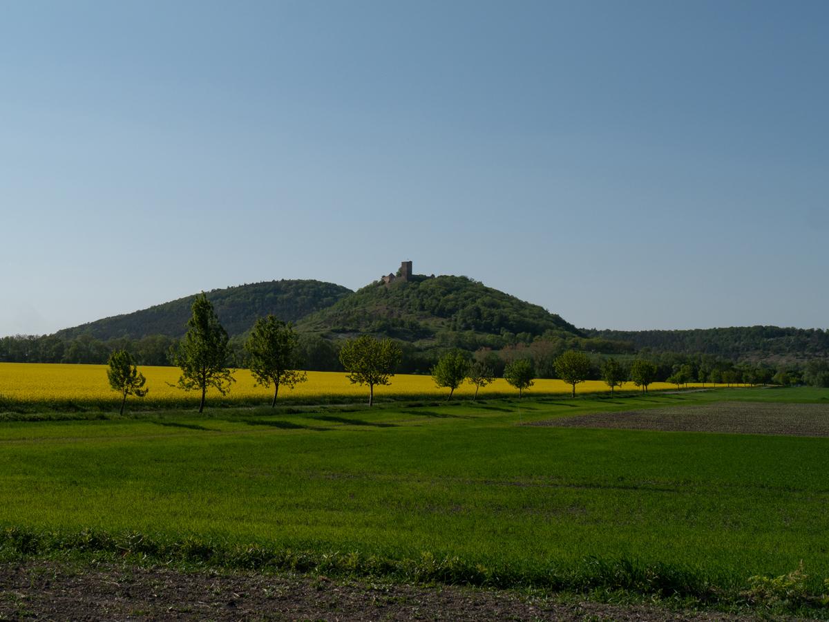 Blick zur Burg Gleichen und zum Kaffberg vom Gräfenbrunnen