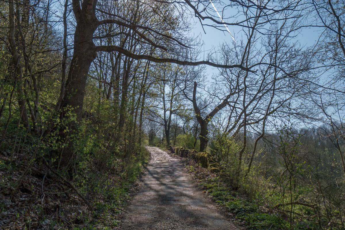 Weg im Rehbocktal unterhalb des Schlosses Batzdorf