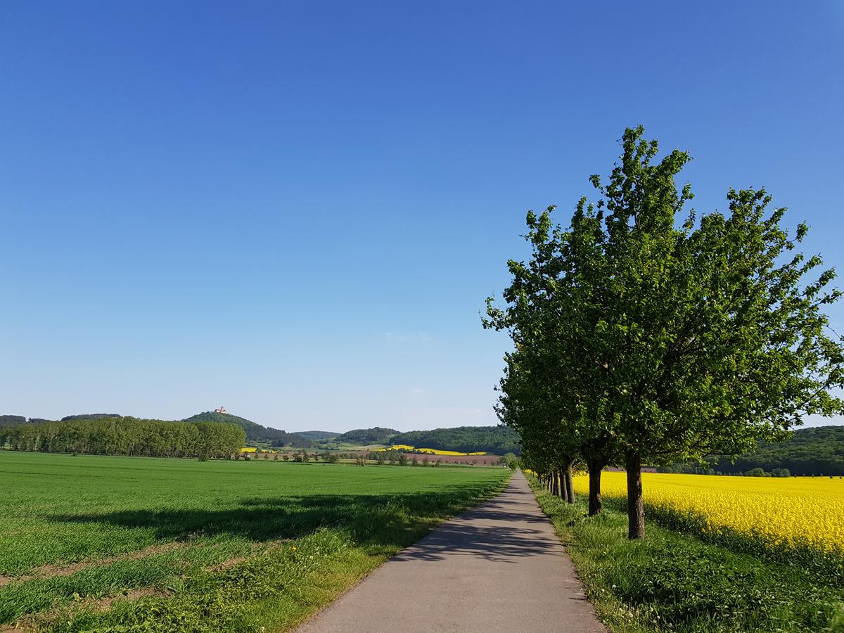 Letztes Wegstück Richtung Autobahnunterführung und Freudenthal mit Blick zurück zur Wachsenburg