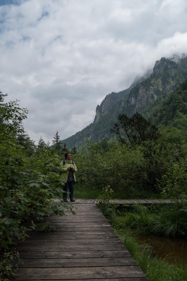 Die Falkensee-Zone kann man auf Stegen betreten.