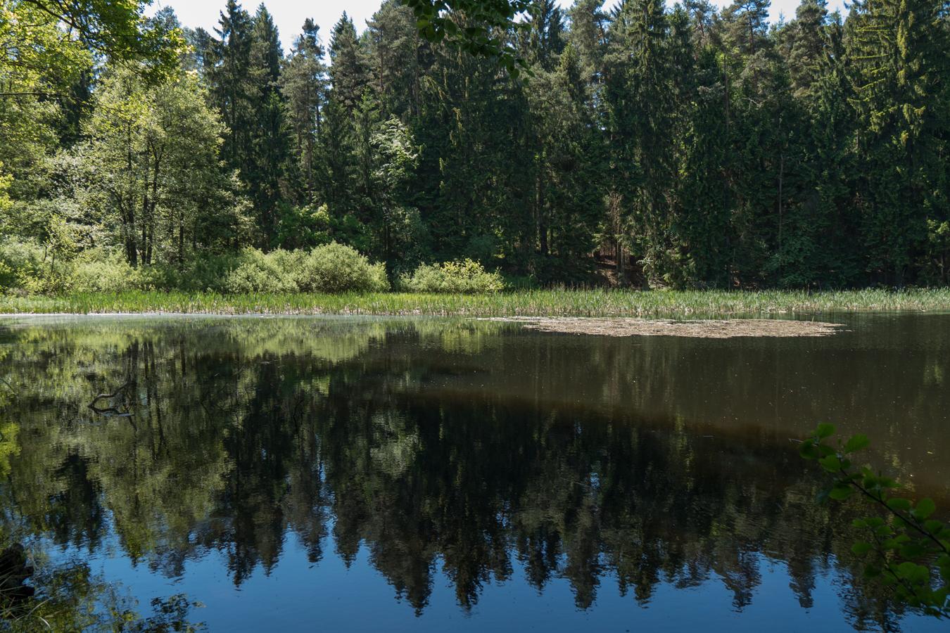 Am Schwarzen Teich