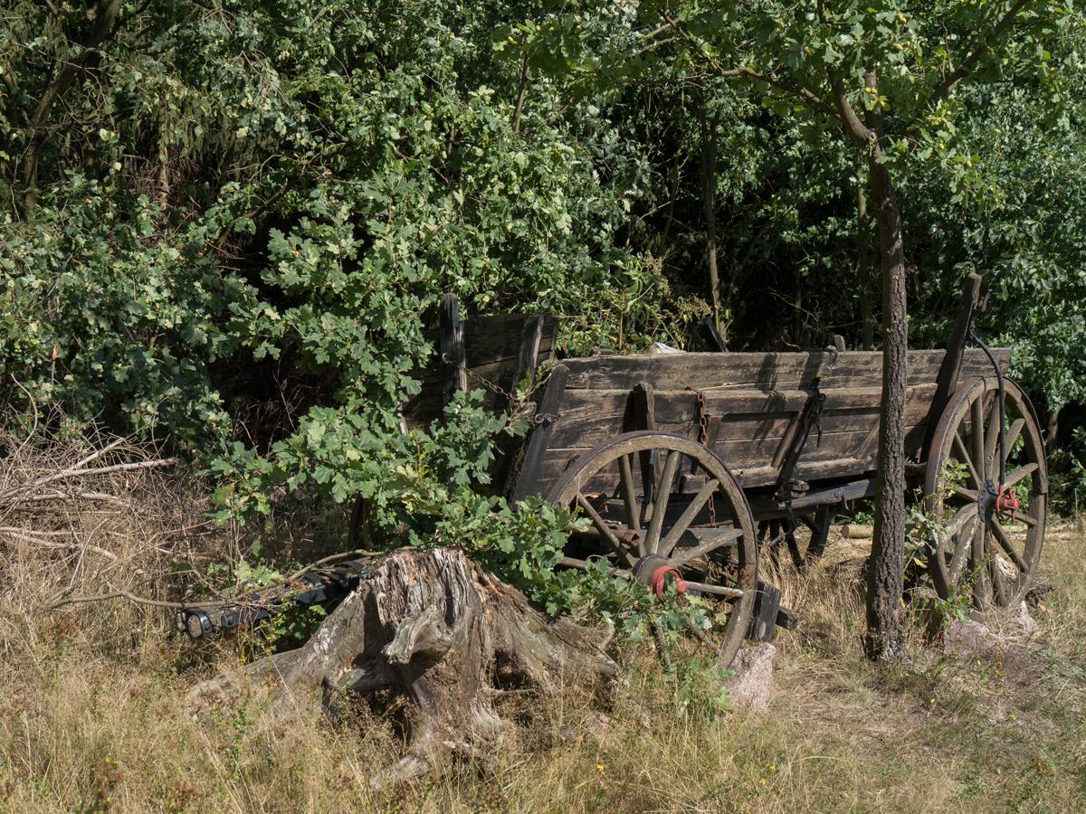 Historische Landtechnik an der Triebischtalbaude