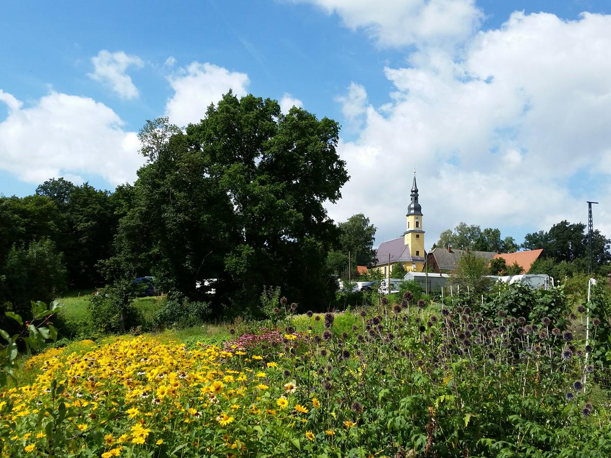 Blick zur Kirche in Blankenstein