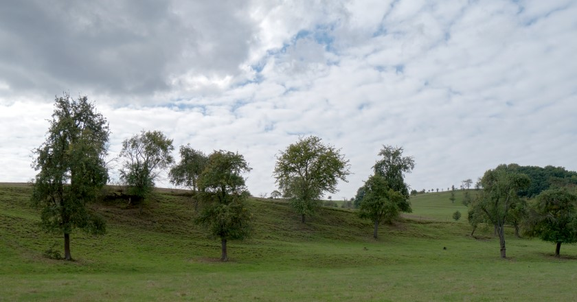 Regenbachtal