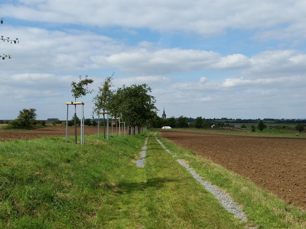 Blick zurück nach Röhrsdorf