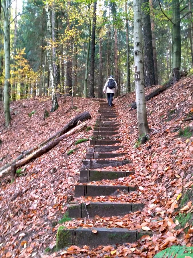 Auf dem Steig zu Ludens Ruh