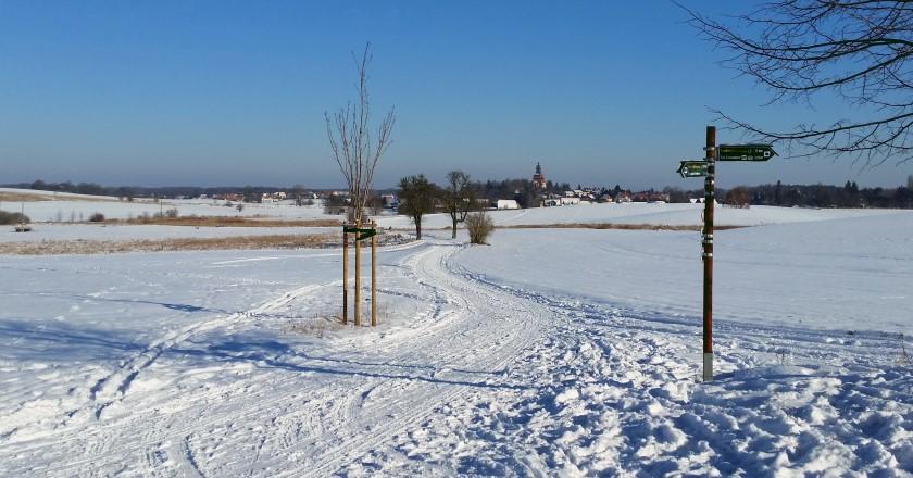 Blick vom Nordufer des Dippelsdorfer Teichs nach Moritzburg