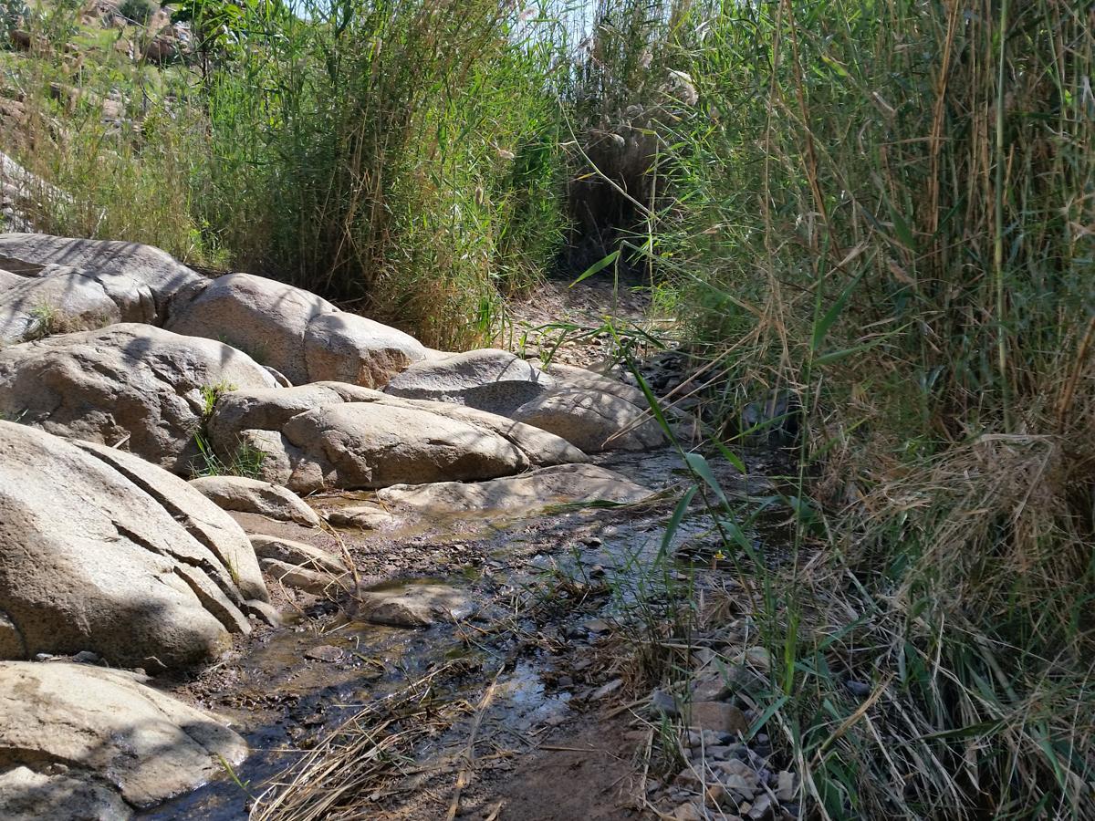 Los geht's: Weg durch den Barranco de las Peñitas