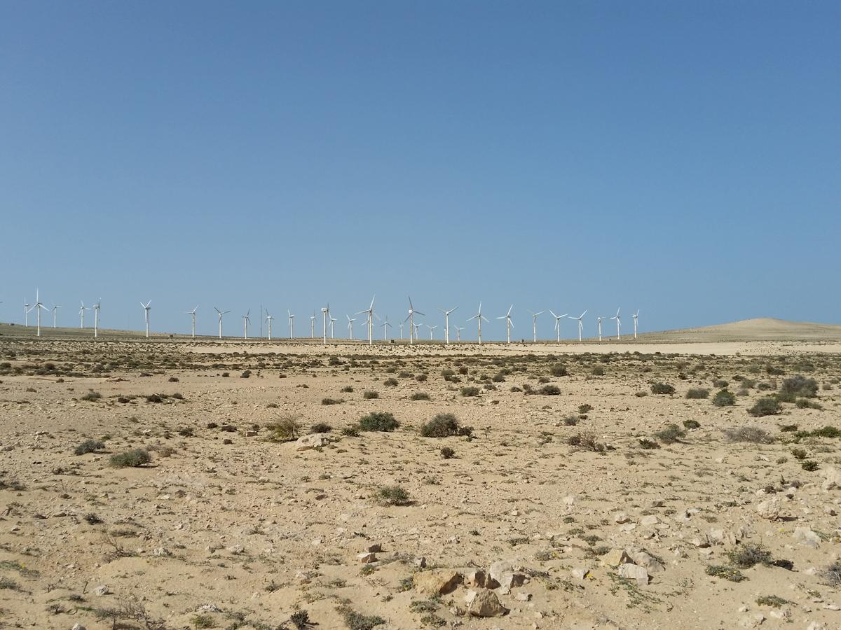 Blick zum Windpark