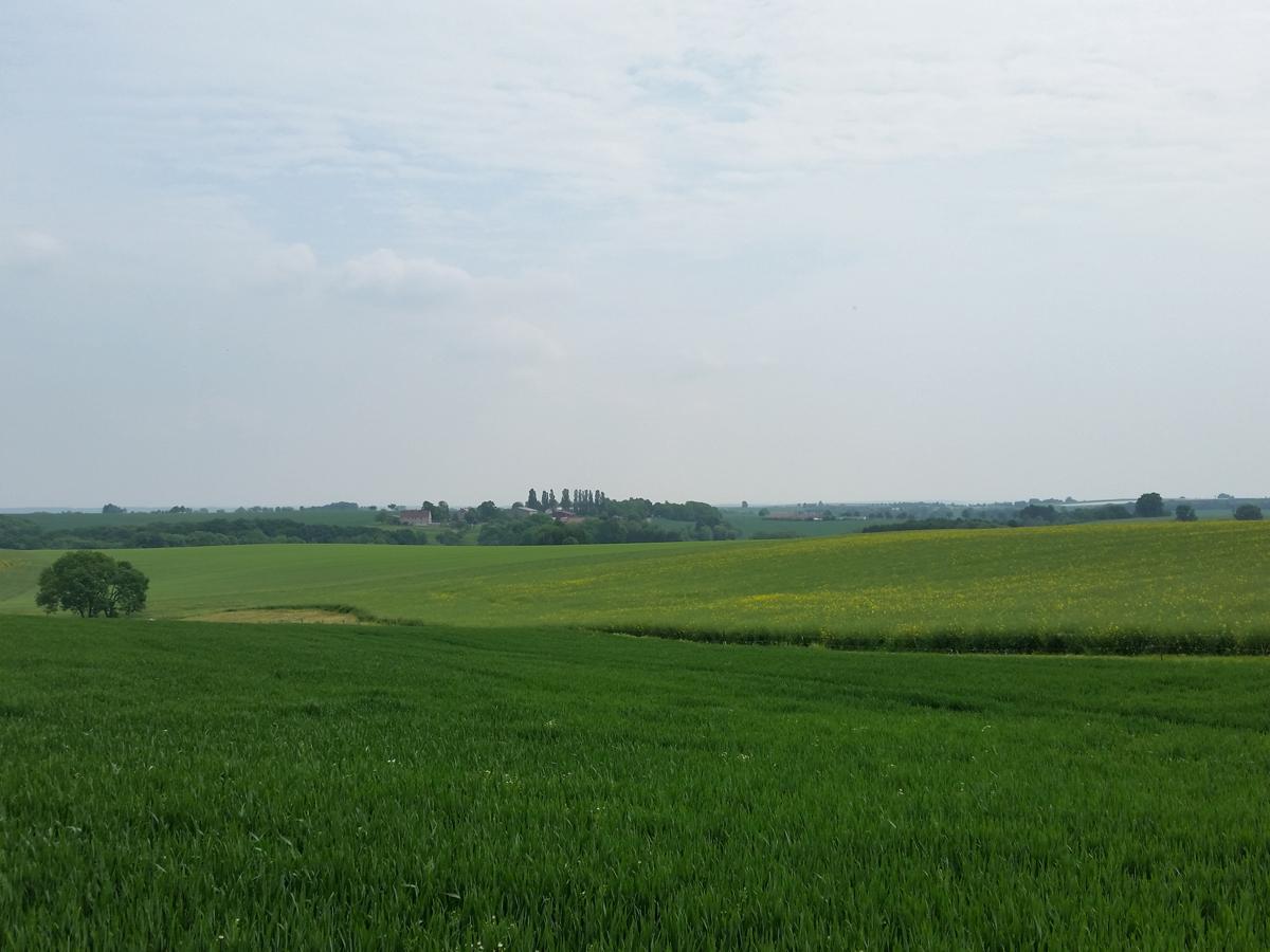 Aussicht vom Buschbadweg am Friedhof in Polenz