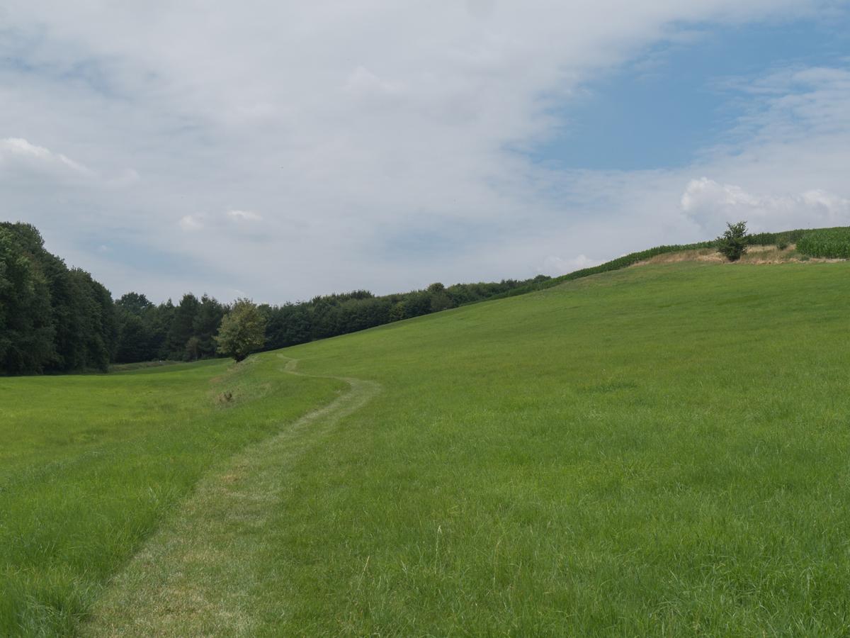 Auf dem Krögiser Weg