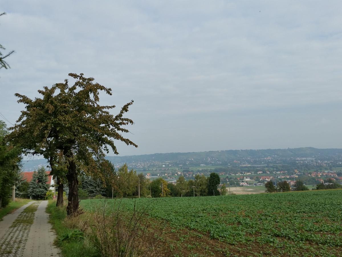 Blick vom Fleischerweg über das Elbtal