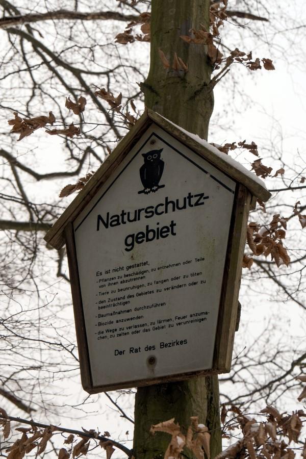 Am Oberen Altenteich im Moritzburger Teichgebiet
