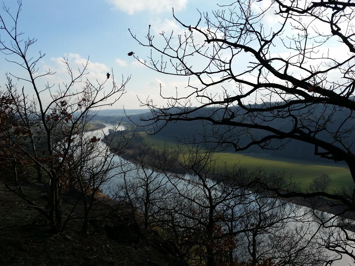 Blick über die Elbe vom Boselweg