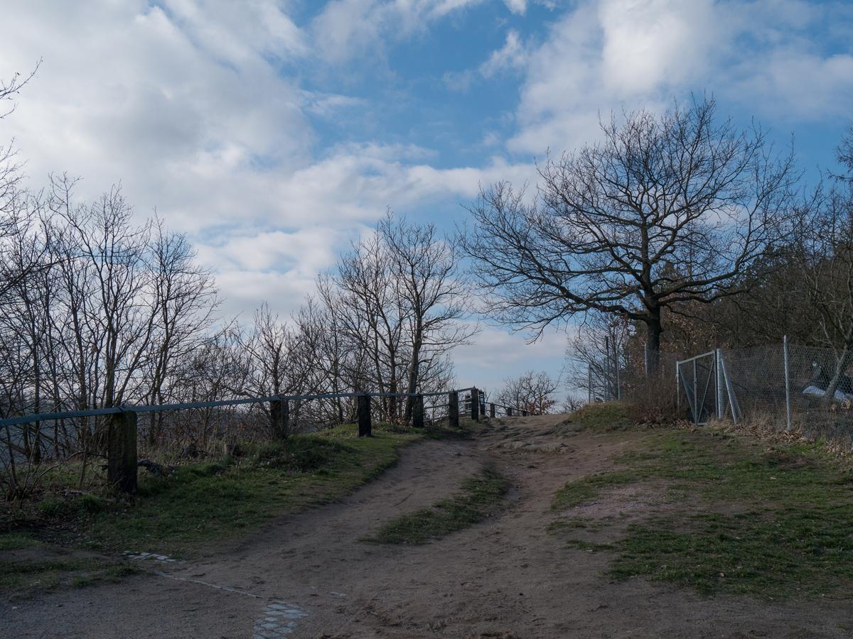 Auf dem Boselweg
