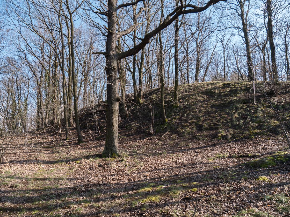 ... Bronzezeitlicher Abschnittswall
