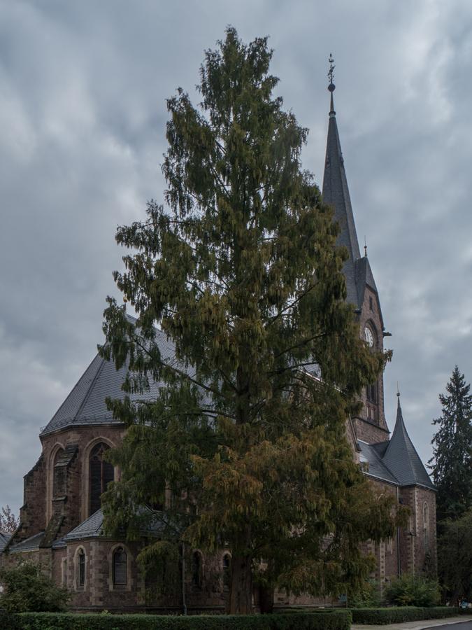 An der Lutherkirche in Meißen