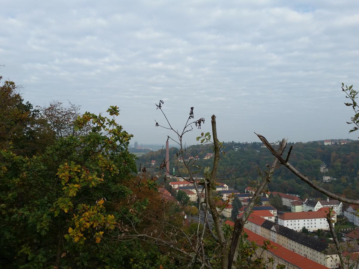 Blick zum Burgberg