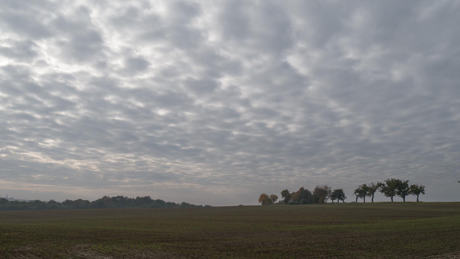 Landschaft an der Korbitzer Straße