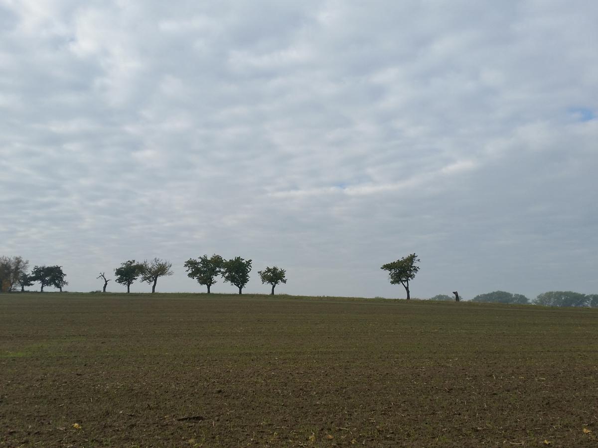 Landschaft am Kanonenweg