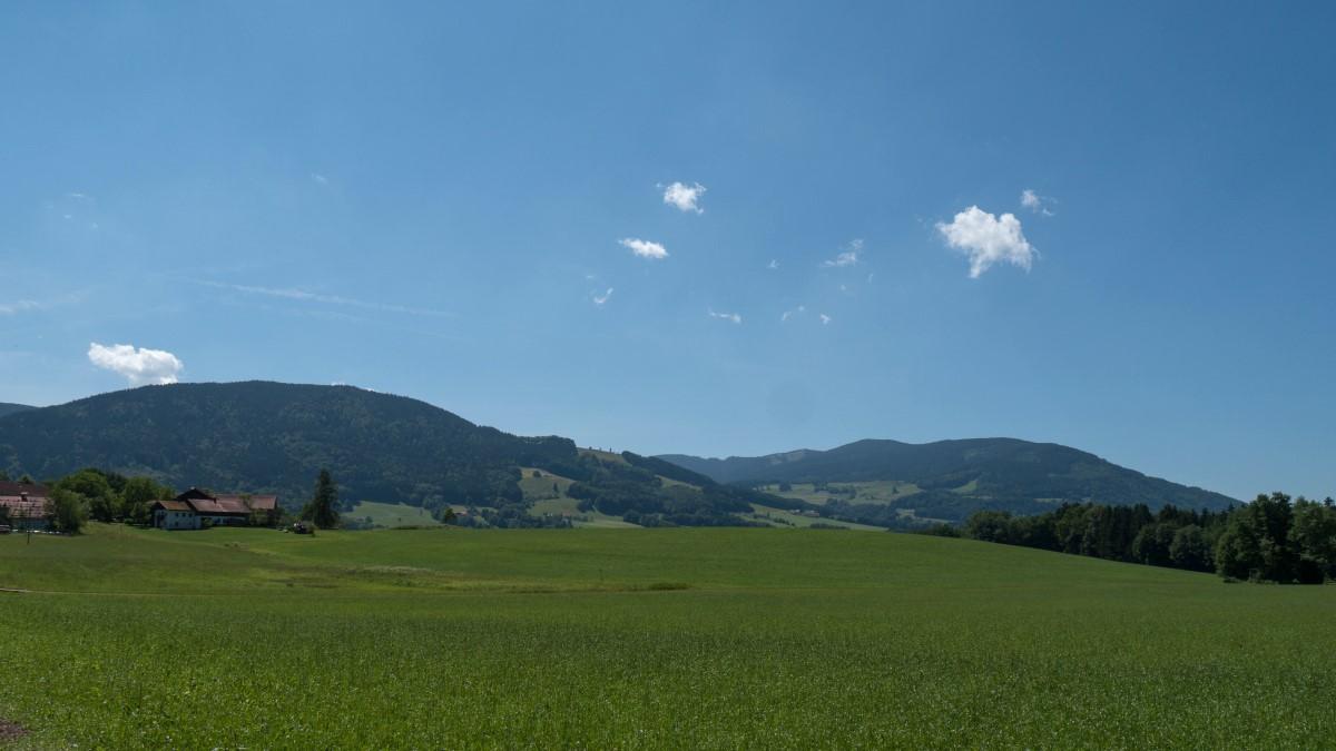 Wieder abwärts mit Blick zur Fürmannalm und zum Teisenberg