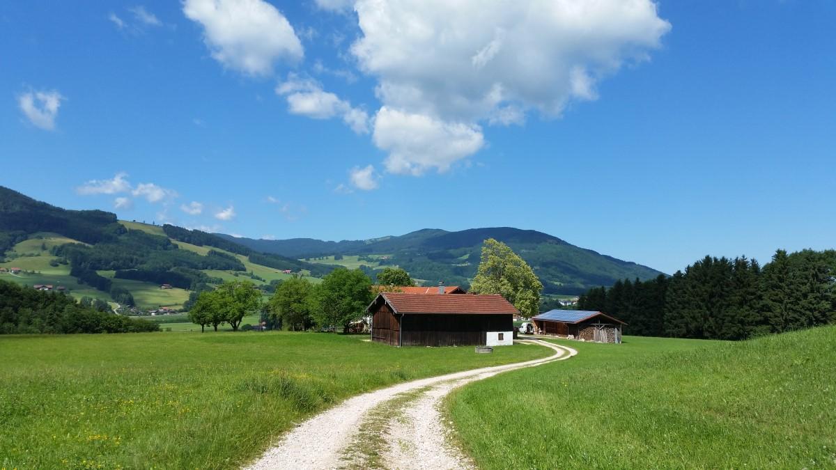 Blick zur Fürmannalm und Teisenberg