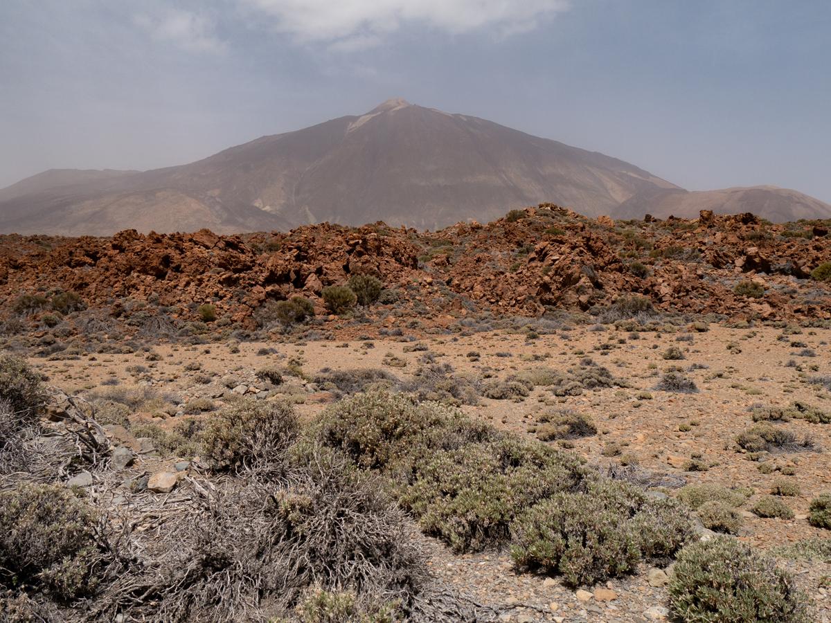 Blick über eine Sandebene zum Teide