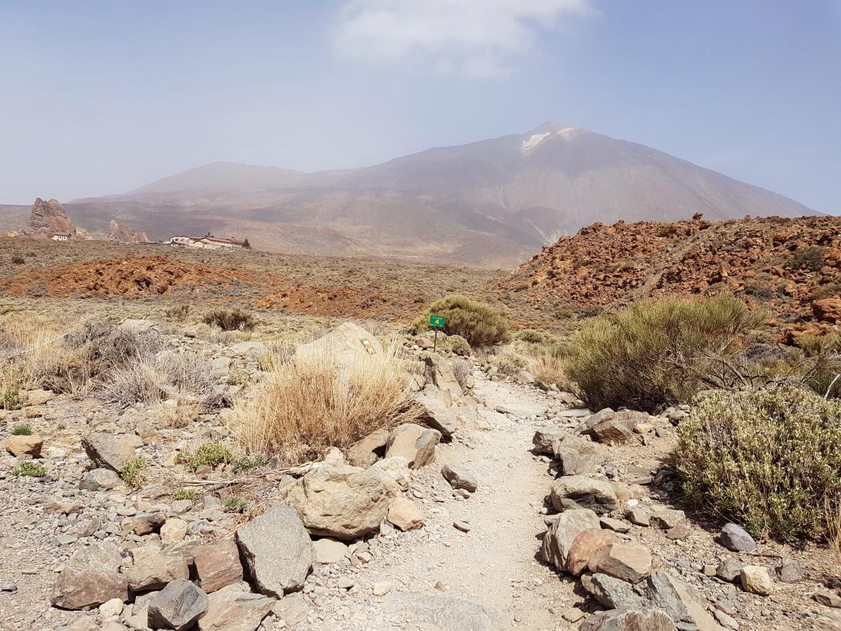 Auf dem Weg N° 4 mit Rückblick zum Parador und den Roques de García