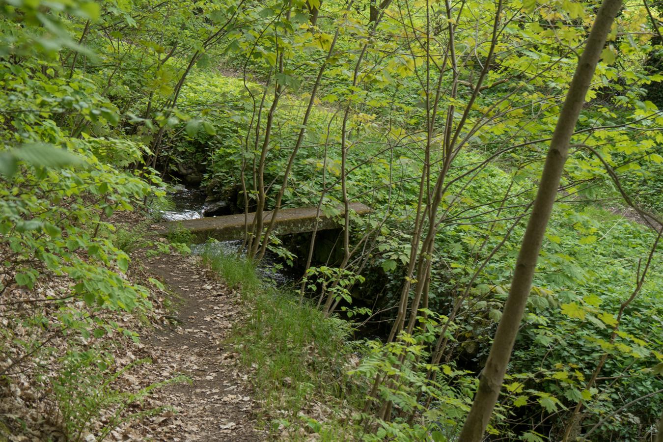 Kleine Brücke über den Mühlgraben