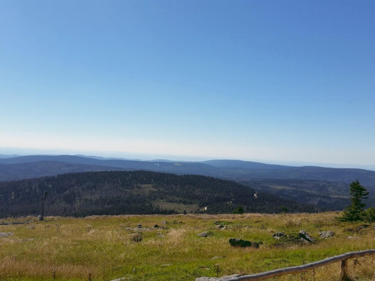 Blick Richtung Quitschenberg mit Goetheweg