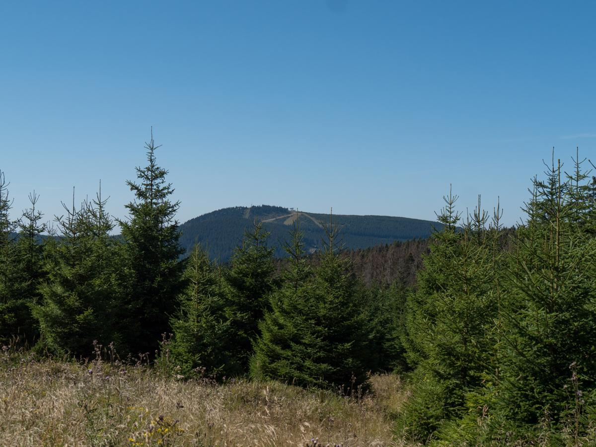 Blick vom Glashüttenweg zum Wurmberg